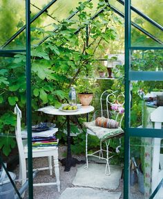 I would love a little greenhouse