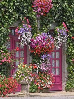 Giclee printing makes the vibrant hues of the West of the Wind Brittany Beauty Outdoor Wall Art stand out. Pink and purple flowers overtake the façade. Pink And Purple Flowers, Exotic Flowers, Beautiful Flowers, Outdoor Wall Art, Outdoor Walls, Garden Cottage, Home And Garden, Garden Kids, Garden Bar