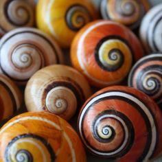 bicocacolors: espiral