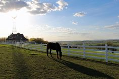 Glorious end of April at the Hurst House Bed and Breakfast, Ephrata PA