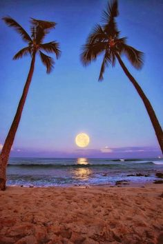 Makalawena Beach, Kailua, Hawaii You can save up to 85% off of your travel. Zyntravel.com Promo Code 1175