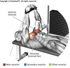 CHEST - FLAT BENCH CABLE FLYES