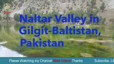 Naltar Valley in Gilgit-Baltistan, Pakistan – Meta Videos Welcome to Meta Videos Entertainment Official Channel! We deeply appreciate all of your l we upload. Gilgit Baltistan, Movies Online, Pakistan, Channel, Thankful, Entertaining, Videos, Hilarious, Video Clip