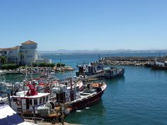 Port St Francis with clear skies and St Francis Bay in the background.