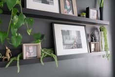 Learn how to make chic DIY picture ledge shelves inspired by Ikea's Mosslanda line Diy Furniture Cheap, Diy Furniture Projects, Picture Ledge Shelf, Ikea Photo Ledge, Ikea Mosslanda, Home Decor Items, Diy Home Decor, Diy Cat Tree, Soft Baby Blankets
