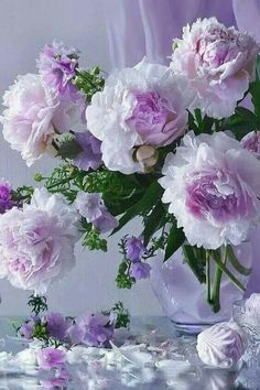 Beautiful Flowers Wallpapers, Beautiful Rose Flowers, Beautiful Flower Arrangements, Amazing Flowers, Pretty Flowers, Floral Arrangements, Peony Arrangement, Different Types Of Flowers, Bloom