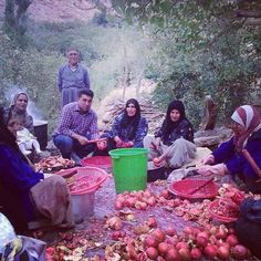 Instagram photo by @kurdistanheye (Kurdistan)   Statigram Kurdish Food, Religion, The Kurds, Kurdistan, People Of The World, Syria, Pomegranate, Middle East, Chefs
