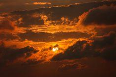 Orange Monochromatic Photography