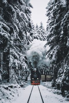 train, winter, and snow image Driving Home For Christmas, Winter Christmas, Christmas Home, Xmas, Christmas Cookies, Christmas Feeling, Merry Christmas, Christmas Photography, Winter Photography