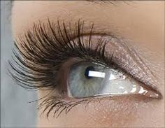 wimperextensions one-by-one www.wimperspecialist.be