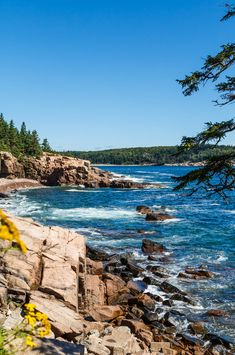There are 4 campgrounds in Acadia National Park. Campers rate: best for RV camping, tent campsites, closest to the ocean, quietest, best for hiking. Go Hiking, Hiking Trails, America And Canada, North America, 5th Wheel Travel Trailers, Private Campgrounds, Acadia National Park Camping, Rv Motorhomes, Mount Desert Island