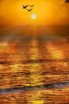 Beautiful sunset over the ocean Beautiful World, Beautiful Places, Beautiful Pictures, Amazing Sunsets, Amazing Nature, Amazing Art, Beautiful Sunrise, Beautiful Morning, Belle Photo