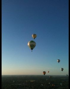 "August 18-19, Allison: ""Helped 'crew' the balloon Endeavor with pilot Kenny Weiner while my husband Tom took his first balloon ride..."""