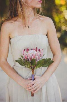 An example of a King Protea bridal/bridesmaid bouquet.
