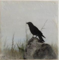 Crow  Original PhotoEncaustic on Wood by encausticimages on Etsy.