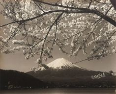 View Mount Fuji by Koyo Okada sold at Photographs on 22 Nov London . Learn more about the piece and artist, and its final selling price Mount Fuji, Japan Travel, Mount Rainier, Street Photography, Monochrome, Florida, London, Mountains, Black And White