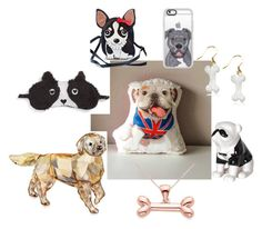"""Dog lovers"" by dinara44 on Polyvore featuring interior, interiors, interior design, home, home decor, interior decorating, Swarovski, Allurez, P.J. Salvage and Comeco"
