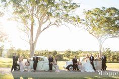 Aaron and Bel's wedding Wedding Cars, Gold Coast, Dolores Park, Travel, Beautiful, Viajes, Destinations, Traveling, Trips