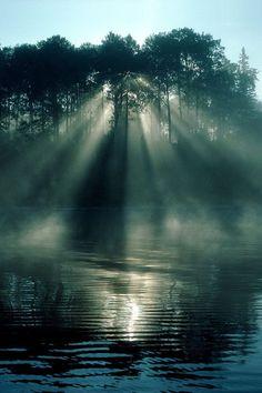 Rays of the sunrise shine through the trees of Rabbit Lake near Temagami, Ontario.