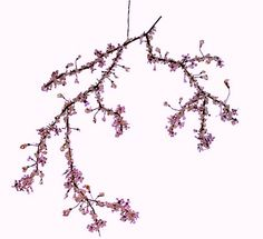 Looks like a #Cherry #Blossom branch, actually a #chandelier!