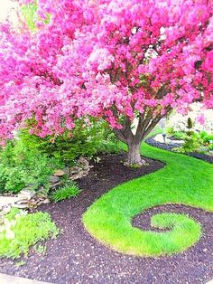 I love this whimsical garden idea. Pink and green garden with a spiral pattern in the grass and mulch.