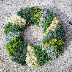 Bildergebnis für kränze für allerheiligen Advent Wreath, Holiday Fashion, Nespresso, Decoration, Funeral, Diy And Crafts, Succulents, Wreaths, Garden