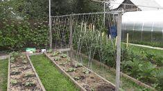 Арки и шпалеры для плетущихся растений