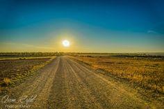 Dia daurat (Golden day) by Quim Rafel on 500px