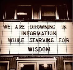 We are drowning in information while starving for wisdom Quotes To Live By, Life Quotes, Qoutes, Wisdom Quotes, Mind Unleashed, Tropical, Knowledge And Wisdom, Entrepreneur Motivation, Motivational Thoughts