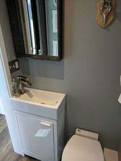 Tiny House Bathroom Macerating Toilet Compact Sink With Cabinet The Waste Water Can Go Into Tanks Hidden Tiny Bathrooms Tiny House Builders Small Bathroom
