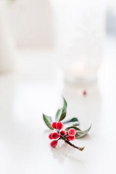   Merry Christmas!   Elizabeth Gaubeka Photography #inspiration