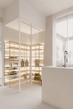 A Mesmerizingly Minimalist 4 Bedroom Luxury House By Igor Sirotov