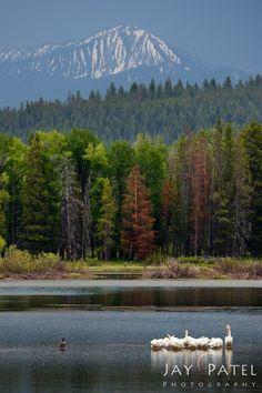 Grand Tetons National Park, Wyoming; photo by .Jay Patel