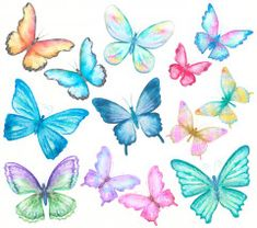 Watercolor Butterflies Set On White Wall Mural, Premium Canvas Wall Murals for Residential and Commercial Use, from Limitless Walls. Standard self adhesive peel and stick fabric wall art, custom sizing is available. Variety of easy install fabrics and finishes to choose from. Personalize any space with beautiful abstracts, photography, and more. Samples available upon request and free shipping to the US and Canada, plus a risk free return policy. Cartoon Butterfly, Butterfly Drawing, Butterfly Painting, Butterfly Watercolor, Butterfly Background, Butterfly Wallpaper, Simple Canvas Paintings, Flower Coloring Pages, Fabric Wall Art