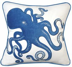 We've been waiting for this shy octopus to show off its' beauty!