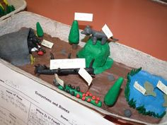 We've been studying biomes and ecosystems in science class. For their summative assessments, I had the kids use plasticine to make a 3D sculpture of an ecosystem in their assigned biomes. Students had to start out doing research on a graphic organizer I provided them with The students LOVED it!