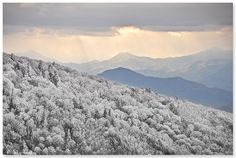 A view of winter from Horseback Ridge on Unaka Mountain in Unicoi Co., TN.  Photo: Mark W Peacock