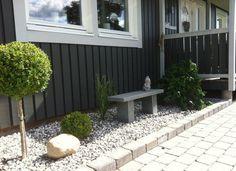 aménagement petit jardin, graminée ornementale, buis en boule et banc décoratif