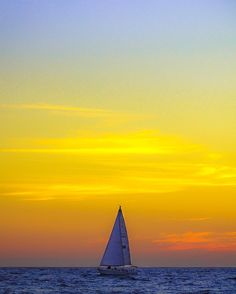 Sailin' (prints avail; see link in profile)  #sailing #sailboat #boats #boat #sail #water #ocean #pacificocean #sunset #sky #color #theviewfromhere #la #losangeles #venice #venicebeach #haze #orange #yellow #beach #clouds #cloudporn #waves #view #theview #lastory #sun #sunsets #magichour by 839photo