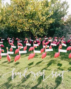 Flamingo escort cards?! Pure genius. Coordination & Design & Paper…