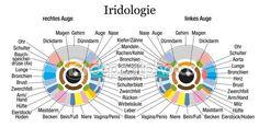iridologia comportamental - Pesquisa Google