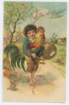 A Joyful EASTER, Cute Boy with Angry Rooster, Chicken Vintage Postcard #Easter