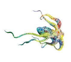 Octopus Watercolor Art Print, Watercolor Painting Octopus Art, See Animal Art…