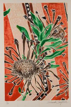 Cressida Campbell   'Native Australian Flora'