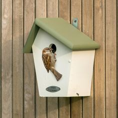 These nest boxes are designed to be used by the most common garden bird species. A large variety of nest boxes are available in various designs, to suit any garden space. Free delivery on orders over Common Garden Birds, Common Birds, Coal Tit, Bird Types, House Sparrow, Great Tit, Garden Decor Items, Garden In The Woods, Nesting Boxes