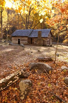 Nestled warmly between all the fall colors