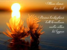 Finnish Words, Qoutes, Poems, Celestial, Thoughts, Plants, Life, Outdoor, Quotations