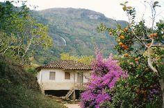 Simples - Vale do Matutu, Minas Gerais, Brazil.