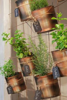 Vertical Garden: Amazing ideas to transform - Recycled Garden Ideas Indoor Garden, Indoor Plants, Home And Garden, Balcony Gardening, Vegetable Garden, Tin Can Crafts, Diy Crafts To Sell, Herb Garden Design, Herbs Indoors