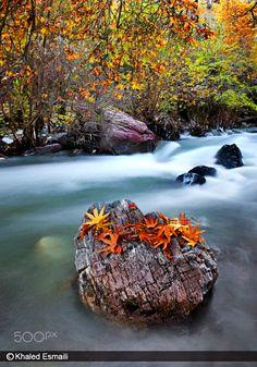 Shalmash River - Sardasht City  Kurdistan